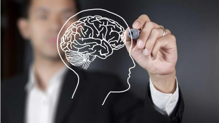 Neurociencias y educacion: el rol de las emociones en el aula