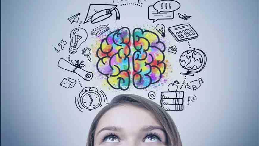 Neurociencias y educación: la evidencia científica en el aula